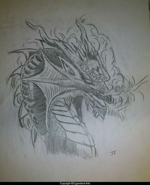 Dessins au crayon papier - Dessin de tete de dragon ...